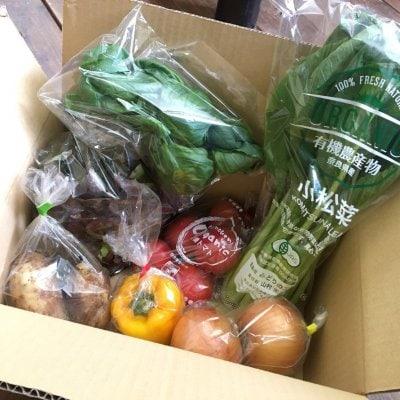 <子供弁当支援付き>有機農家直送の新鮮旬野菜詰め合わせセット