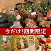 有機野菜とナチュラル惣菜セット