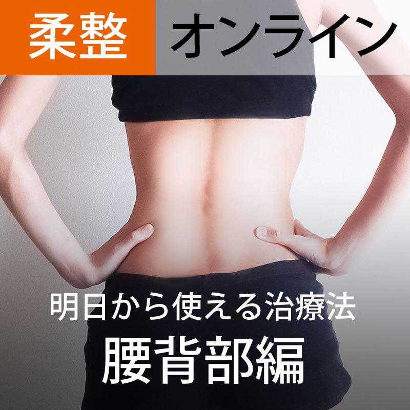 オンライン参加【第2回】明日から使える治療法(腰背部編)〜部位ごとの評価法・治療法を身に着ける〜のイメージその1