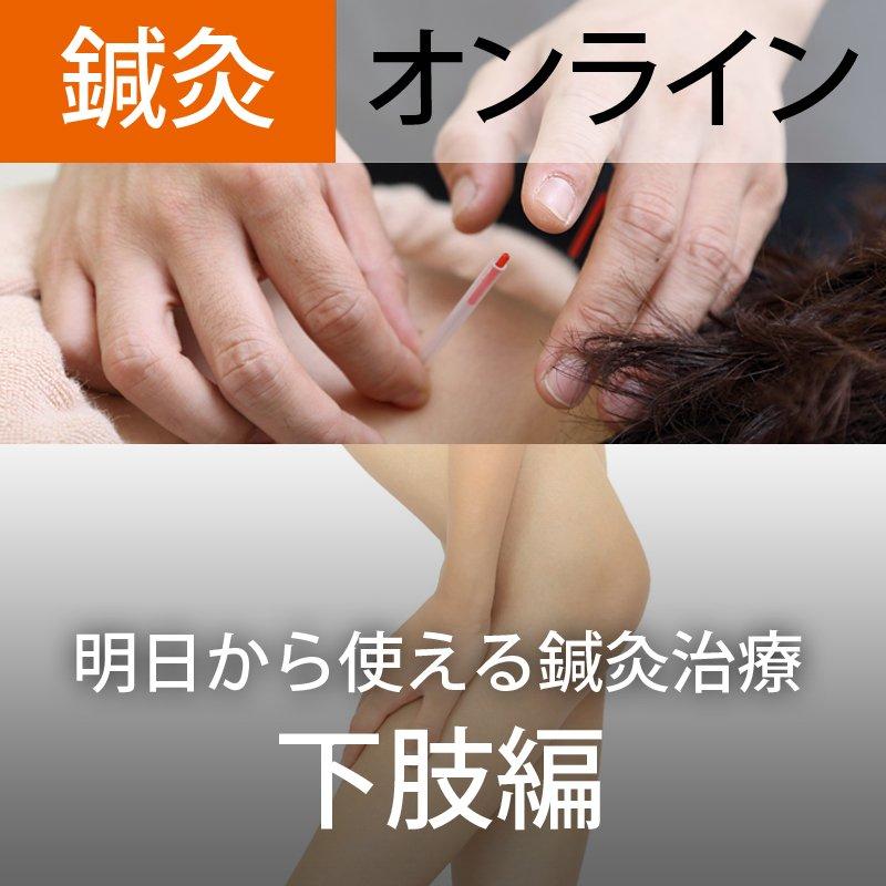 オンライン参加【第2回】明日から使える鍼灸治療(下肢編)〜部位ごとの鍼灸治療法を身につける〜のイメージその1