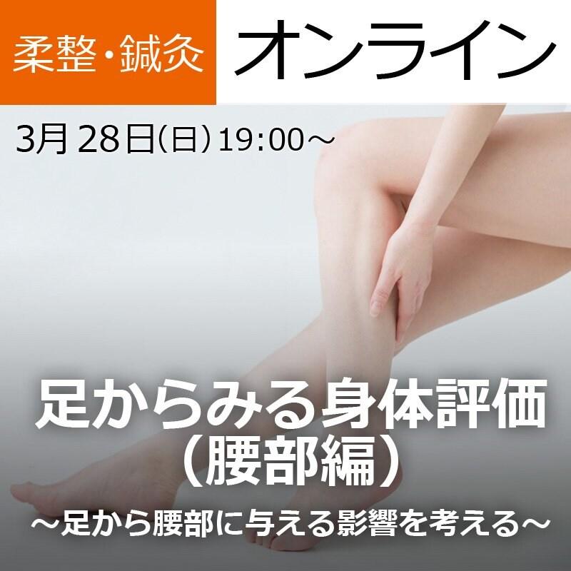 【オンライン参加】足からみる身体評価(腰部編)〜足から腰部に与える影響を考える〜のイメージその1
