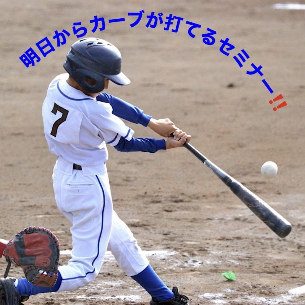 明日からカーブが打てる!野球から仕事を学ぶセミナーのイメージその1