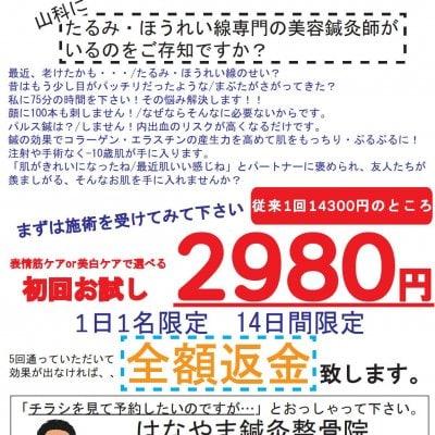 キャンペーン価格【美容鍼】【現地払い専用】