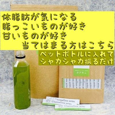 「カテキュ」10本入 体脂肪が気になる方へ 単品注文用。500mlペットボトル1本で緑茶13杯分のカテキンが取れる健康茶