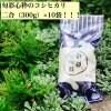 幻の純血種のフリー米!信州松本・旬彩心粋コシヒカリ2合×10袋