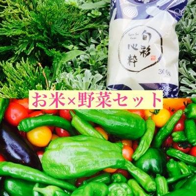 【信州からの贈り物】旬彩心粋コシヒカリ×お野菜セット