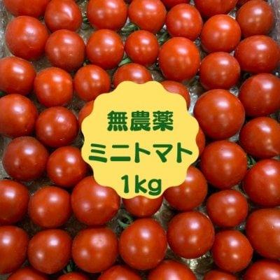 無農薬ミニトマト 1kg 1,350円(新潟県魚沼産)