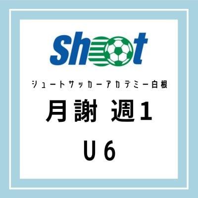 シュートサッカーアカデミー白根 U6月謝