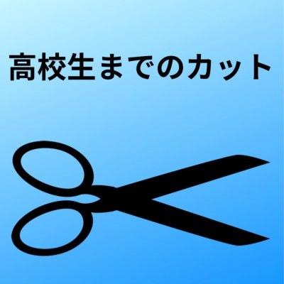 【学生】高校生カットのみ専用チケット