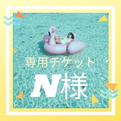 【N様専用】バランスボールスターターセット