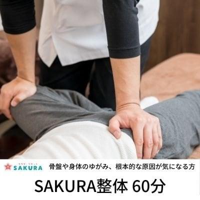 SAKURA整体60分のイメージその1