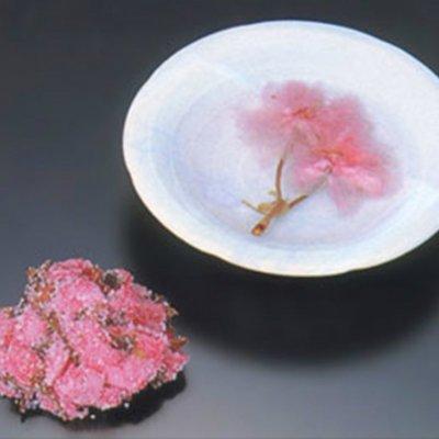 桜の花(関山・200g)/桜の花の塩漬け/桜茶にどうぞ