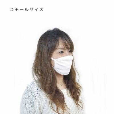 【洗濯して使える】3重構造・ガイアスマスク