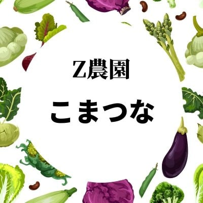 小松菜 11月4日開催ツクツクマルシェ限定チケット