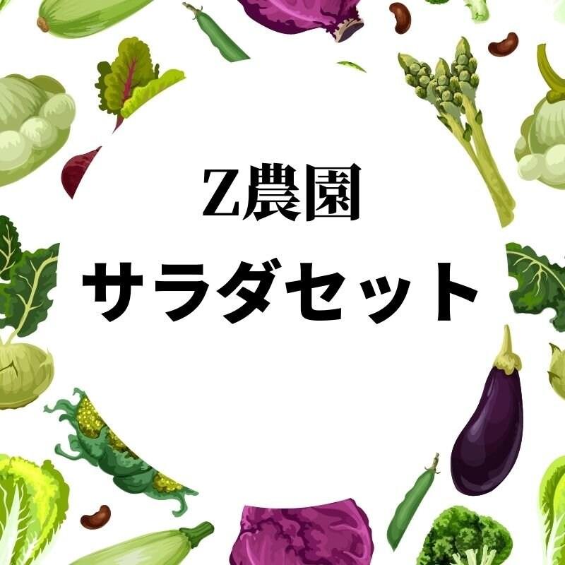 サラダセット(水菜とルッコラ) 11月4日開催ツクツクマルシェ限定チケットのイメージその1
