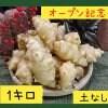 〜オープン記念〜菊芋1.0kg【土無し / 送料無料】