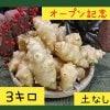 〜オープン記念〜菊芋3.0kg【土無し / 送料無料】