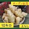 〜オープン記念〜菊芋10.0kg【土無しお得用 / 送料無料】