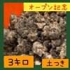 〜オープン記念〜菊芋3.0kg  【土付き / 送料無料】