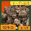 〜オープン記念〜菊芋10.0kg  【土付きお得用/ 送料無料】