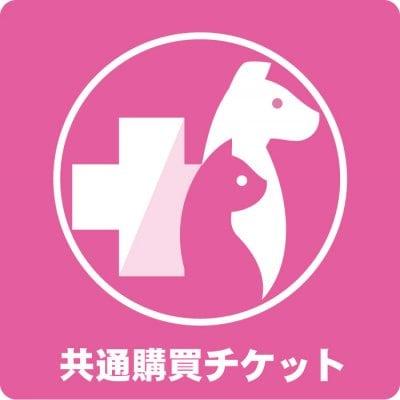 共通購買チケット 10,000円(税込)