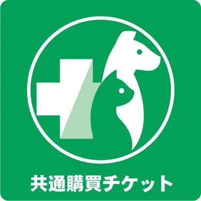 共通購買チケット 100円(税込)