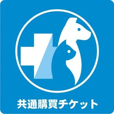 共通購買チケット 1,000円(税込)