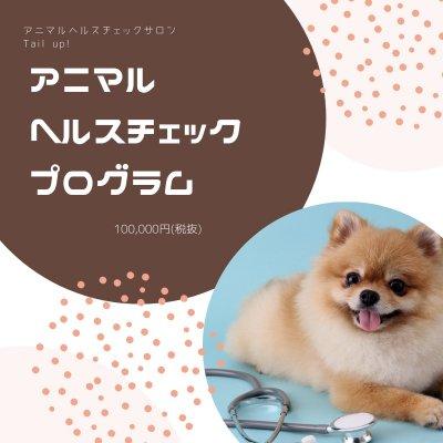 アニマルヘルスチェックプログラム|ペットの健康診断