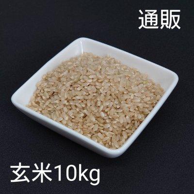 令和2年新米10kg玄米【彩のかがやき】予約販売スタート