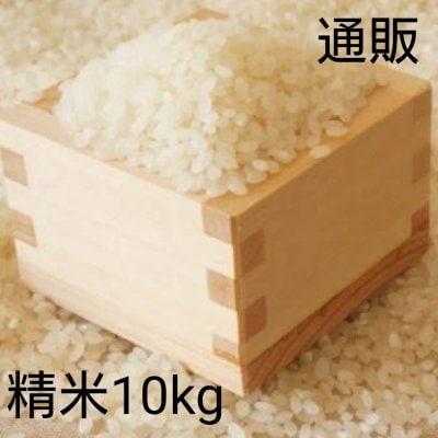 令和3年新米10kg白米【彩のかがやき】予約販売スタート