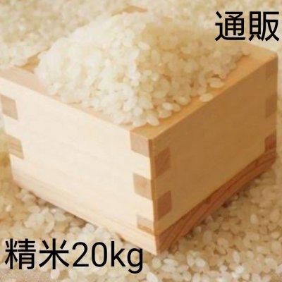 令和3年新米20kg白米【彩のかがやき】予約販売スタート