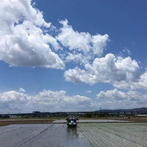 神戸・元町 Cafe Clotho にて グルテンフリー100%米粉食パン ワークショップ・ワンドリンク付のイメージその3