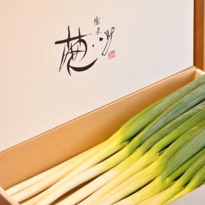 大分県国東市のこだわり野菜甘くてとろける絶品ネギ通販「小田農園/プレミアムベビーネギ/富来ねぎ」