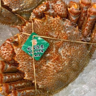 オホーツク毛蟹 ワカジョ 1杯(約500g)