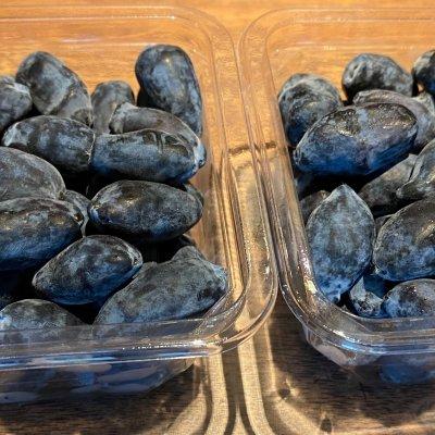 山口農園 生食用ハスカップ2種(テイクアウト)