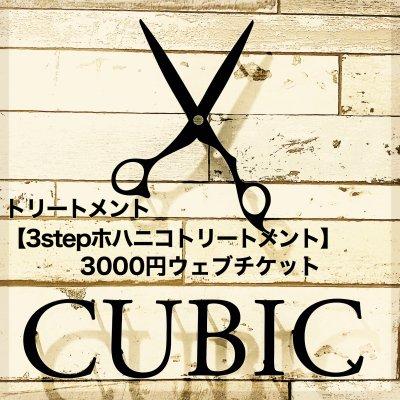 トリートメント【3stepホハニコトリートメント】3000円