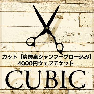カット【炭酸泉シャンプーブロー込み】4000円のチケット