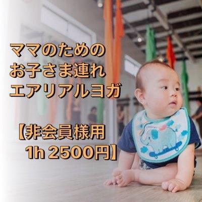 ママのためのエアリアルヨガ【 非会員様用 2500円 】