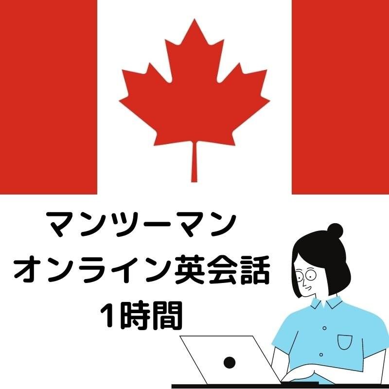 【9月7日火曜夜19時〜】マンツーマン英会話オンラインクラスのイメージその1