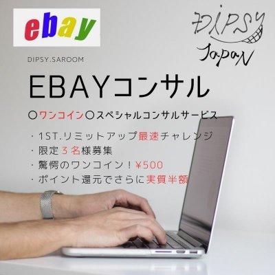 ebayコンサルティング~ワンコインスペシャルコース~