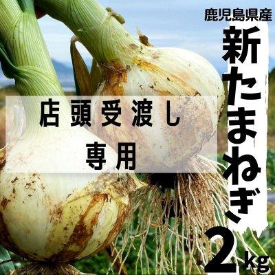 【店頭受け渡し専用】【鹿児島県産】今が旬!新たまねぎ 2kg