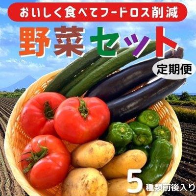 ☆おいしく食べてフードロス削減☆野菜セット 【定期便】
