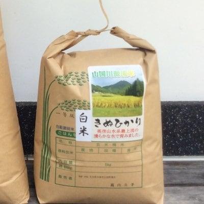 マルシェ専用 山国の源流米【きぬひかり3kg】
