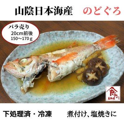 バラ売り【1ヶ月保存可能】【処理済み】解凍するだけ!日本海の高級魚...