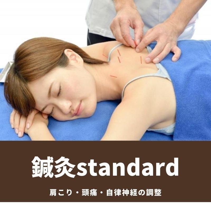 初回限定 鍼灸スタンダードコースのイメージその1