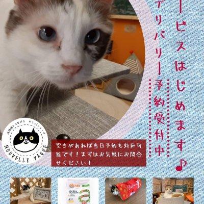 【沖縄本島限定】ペットのためのお買い物代行