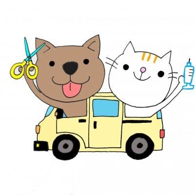 【沖縄本島限定】ねこちゃんのケアでお困りの方むけ訪問ペットケア