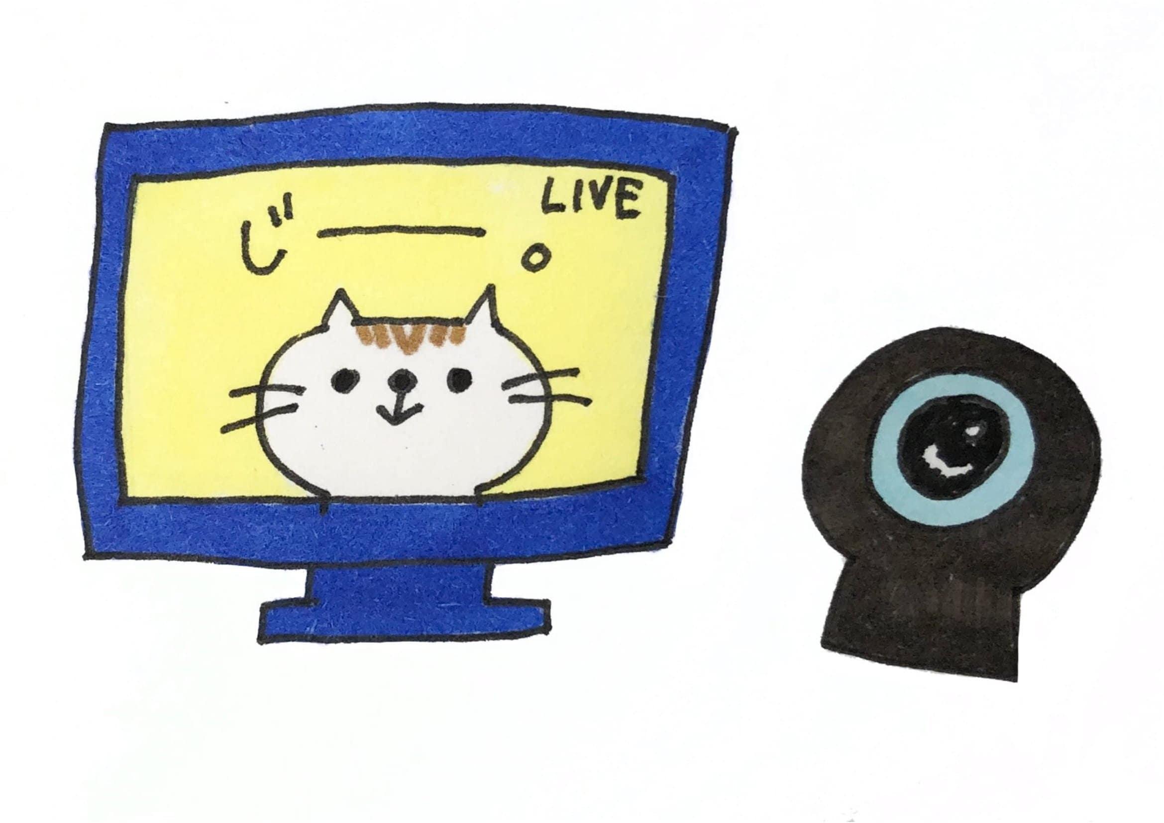 【保護猫支援】オンライン保護猫譲渡会チケットのイメージその1