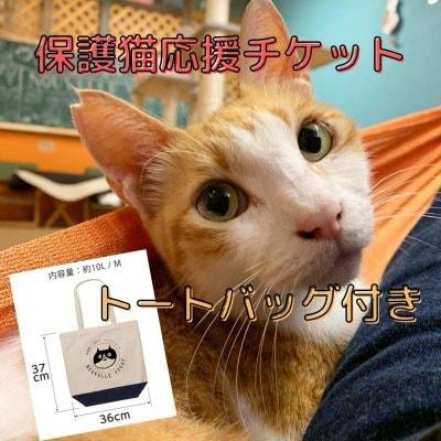 【保護猫応援チケット】5500円 トートバック付き