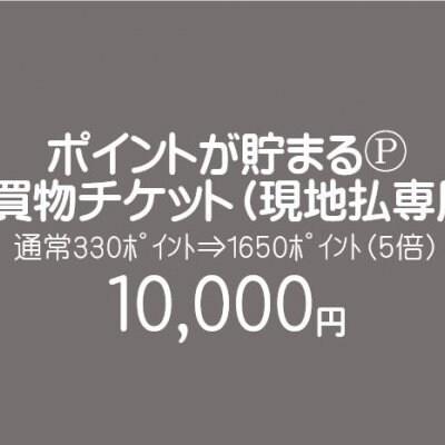 【現地払い専用】お買物チケット/10000円